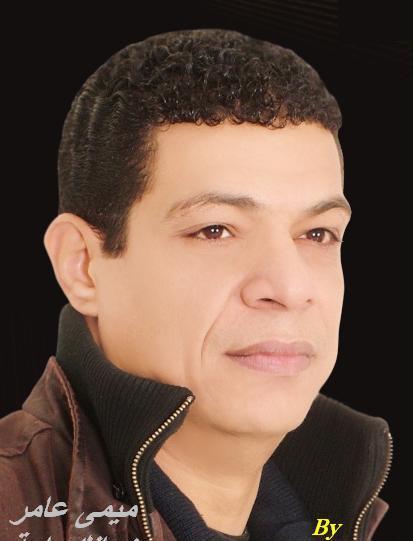 ميمي عامر